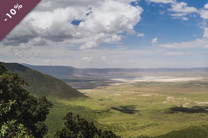 voyager_en_Tanzanie_avec_tumbili_a-la-voliere-du-no-mad