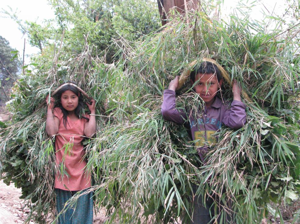 53_ecotourisme-voyages-alternatifs-Nepal01