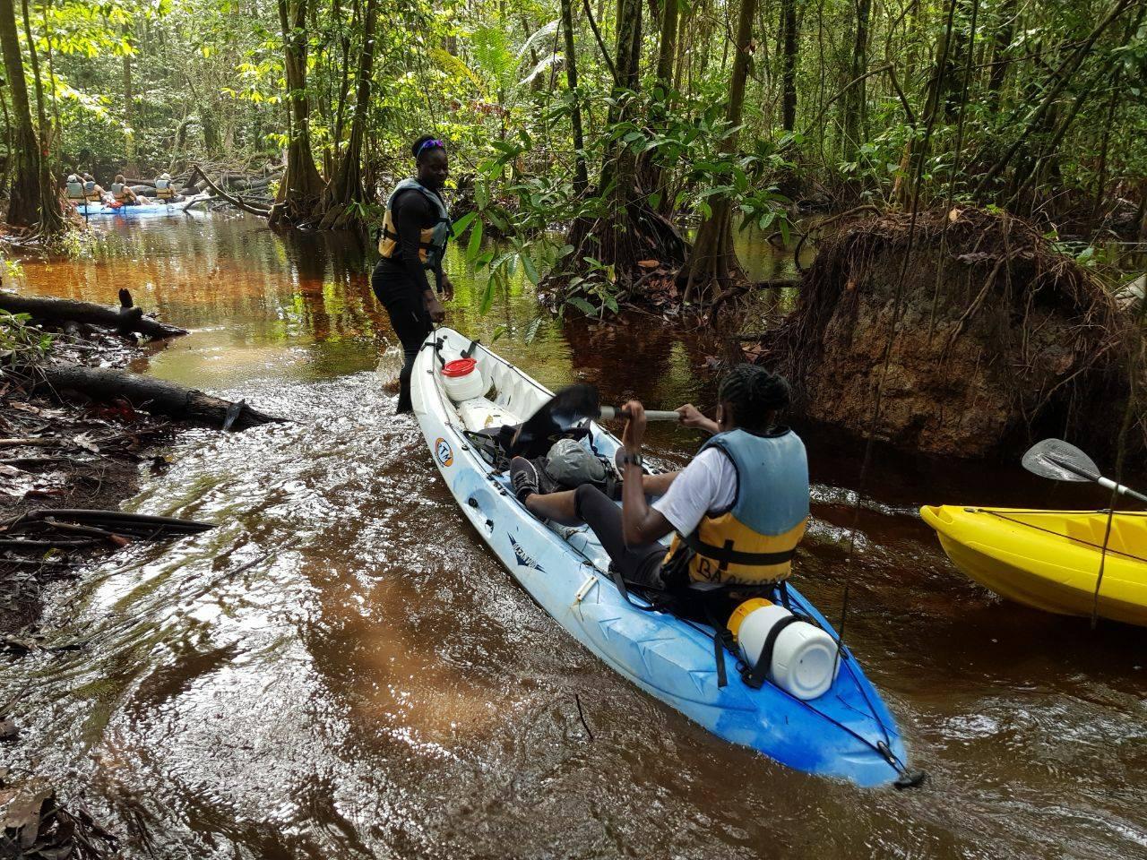 balade en foret en mode Kayak