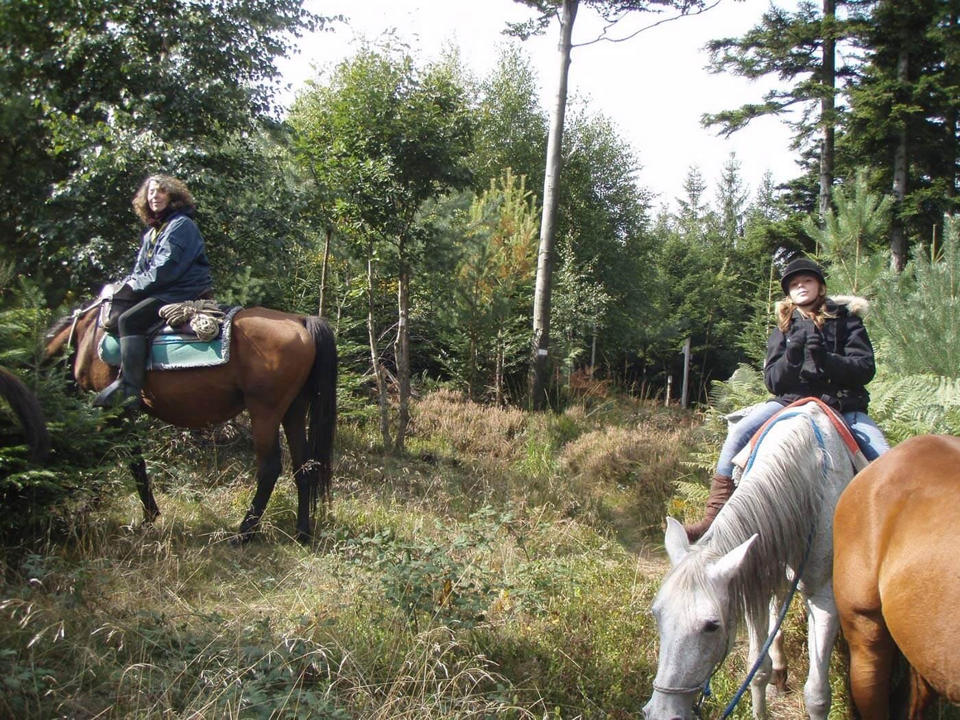 Rando cheval Vosges - Les voyageurs solidaires - photo Les voyageurs solidaires