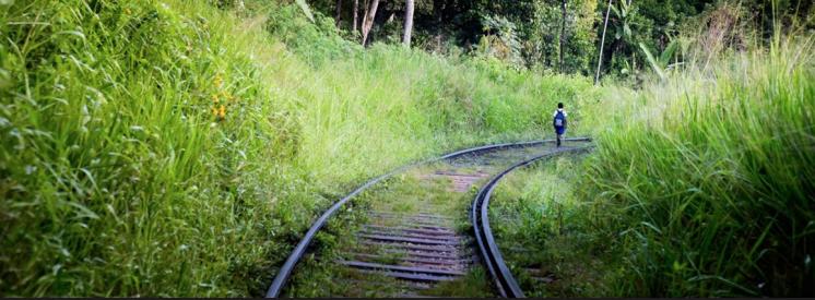 Charme-et-romance-au-Sri-Lanka